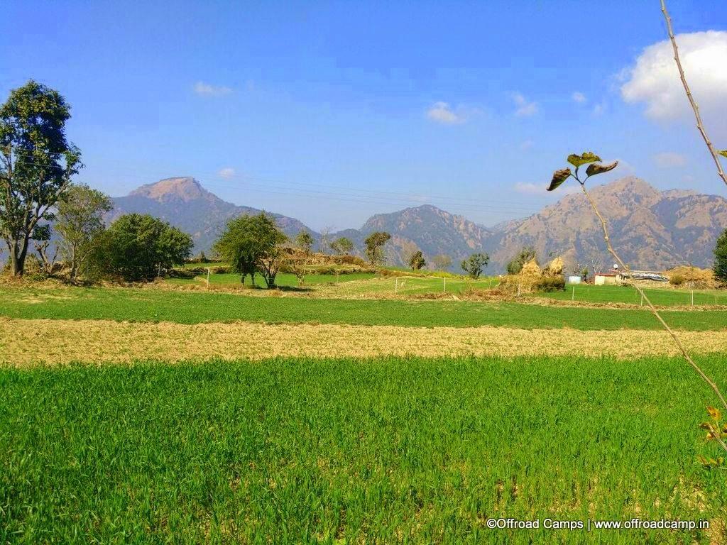 Farmland at Offroad Kasmoli