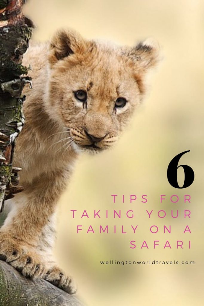 6 Tips for Taking Your Family on a Safari - Wellington World Travels | Family travel destination | family travel tips when going on a safari with kids #safaritips #safariwithkids #safariwithfamily #Africansafari